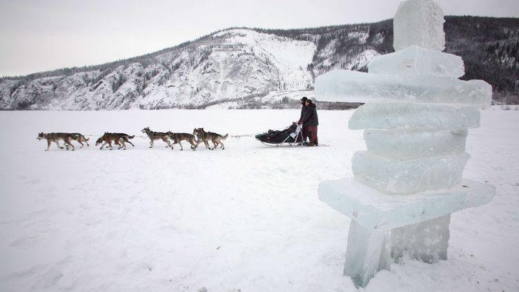 Des chiens de traineau traversent le territoire de Yukon dans le nord-ouest du Canada, le 15 février 2008. (SAM HARREL/AP/SIPA)