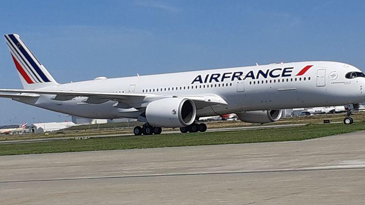 Un A 350 de la compagnie Air France. (STÉPHANE IGLÉSIS / RADIOFRANCE)