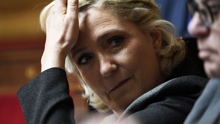 Marine Le Pen, la présidente du Rassemblement national, le 5 juin 2018, à l'Assemblée nationale. (BERTRAND GUAY / AFP)