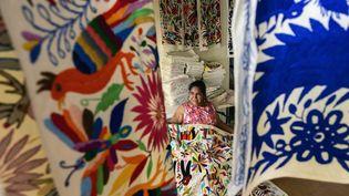 La créatrice mexicaineGlafira Candelaria Jose de l'ethnie Otomie au milieu de ses créations au village de San Nicolas, à Tenango de Doria au Mexique, le 18 juin 2019. (PEDRO PARDO / AFP)
