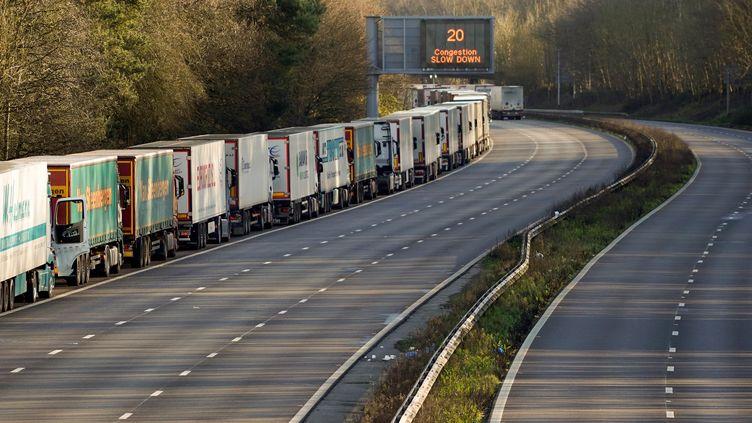 Des camions font la queue avant le port de Douvres en Angleterre, le 25 décembre 2020. (NIKLAS HALLE'N / AFP)