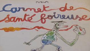 """Couverture de """"Carnet de santé foireuse"""" (ed. Delcourt) de Polza  (France 3 / Culturebox . capture d'écran)"""