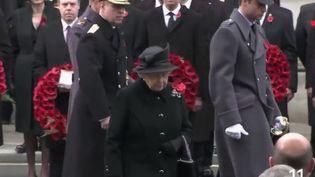 Des millions de Britanniques portent en ce moment un coquelicot à leur poitrine en symbole de ceux qui sont morts pendant la Première Guerre mondiale. (FRANCE 2)