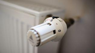 Des radiateurs électriques de la marque Europa sont rappelés à cause d'un risque d'explosion, indique laDirection générale de la concurrence, de la consommation et de la répression des fraudes. (ROBERT SCHLESINGER / PICTURE ALLIANCE / AFP)