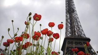 Le jardin éphémère au pied de la tour Eiffel  (Joël Saget/AFP)