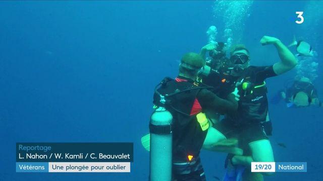 Vétérans : de la plongée pour surmonter le stress post-traumatique