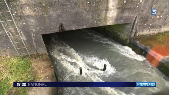 Inondations : les zones humides, la solution efficace pour lutter contre ce fléau ?