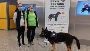 18 novembre 2020.A l'aéroport d'Helsinki, les voyageurs arrivant de l'étranger se voient proposer un test PCR gratuit, mais aussi une détection par chiens renifleurs. Rien n'est obligatoire. (LOUISE BODET / RADIO FRANCE / FRANCE INFO)