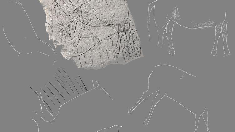 La gravure la plus visible est celle d'un cheval acéphale qui occupe la moitié de la surface. (© DENIS GLIKSMAN)