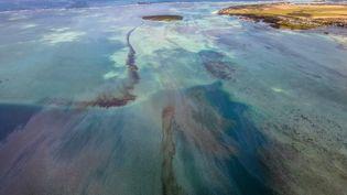 Vue aérienne de la fuite de pétrole provenant du navire MV Wakashio près de la Pointe d'Esny, à l'île Maurice, le 8 août 2020. (AFP)