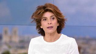 """Dans son dernier livre """"Dans quelle France on vit"""", la grande reporter Anne Nivat, invitée du 13 Heures, a délaissé les terrains de guerre pour s'intéresser à la France. (France 2)"""