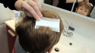 Une personne vérifie avec un peigne anti poux etanti lentes le cuir chevelu de son enfant, à Nancy (Meurthe-et-Moselle), le 26 décembre 2013. (  MAXPPP)