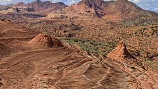 La canyon de la rivière Paria, dans l'Arizona, aux Etats-Unis. (JEAN-PHILIPPE DELOBELLE / BIOSPHOTO / AFP)