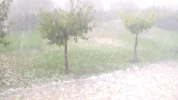 Capture d'écran montrant la chute de grêledasnla région d Toulon (Var), le 19 septembre 2014 ( FRANCE 3 PROVENCE-ALPES)