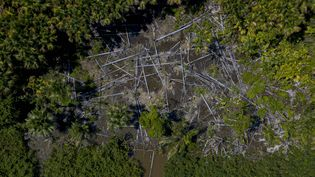 Vue aérienne d'une zone déforestée dans la municipalité de Melgaco au Brésil le 30 juillet 2020. (TARSO SARRAF / AFP)