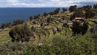 Le lac Titicaca, à la frontière de la Bolivie et du Pérou, se situe à 3 800 m au-dessus du niveau de la mer. (LEBOUCHER-ANA / ONLY WORLD  / AFP)