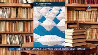 La couverture du livre Pactum Salis (France 3)