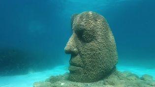 Méditerranée : un musée sous la mer au large de Cannes (France 2)