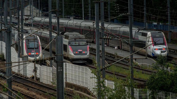 Des TGV en gare de Lille (Nord), le 3 juin 2016. (PHILIPPE HUGUEN / AFP)
