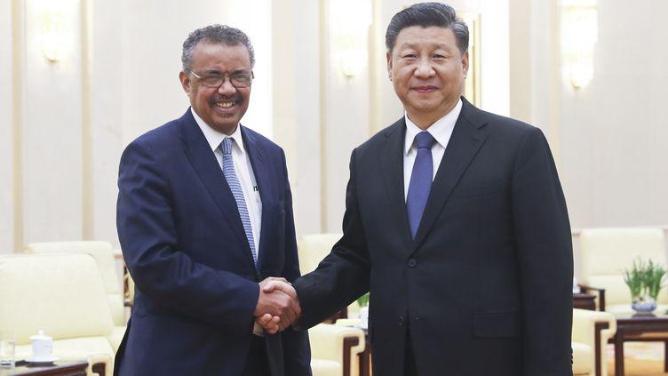 Le président chinois Xi Jinping rencontre le directeur général de l'Organisation mondiale de la santé (OMS), Tedros Adhanom Ghebreyesus, en visite à Pékin, capitale de la Chine, le 28 janvier 2020. (JU PENG / XINHUA / AFP)