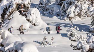 Des skieurs à Gréolières-les-Neiges (Alpes-Maritimes). (ROBERT PALOMBA / ONLY FRANCE)