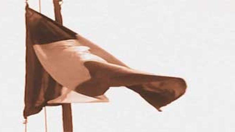 Le drapeau français (FRANCEINFO)