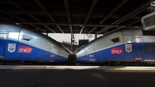 Un train de la SNCF est arrêté en gare de Cannes(Alpes-Maritimes), en septembre 2016. (FRANK DUENZL / PICTURE ALLIANCE / AFP)