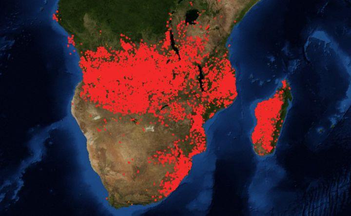 Capture d'écran de la carte interactive des feux de la Nasa. (CAPTURE D'ÉCRAN)