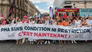 Des manifestants pro-PMA, le 24 juin 2017 à Paris pour la Marche des fiertés. (JULIEN MATTIA / NURPHOTO / AFP)