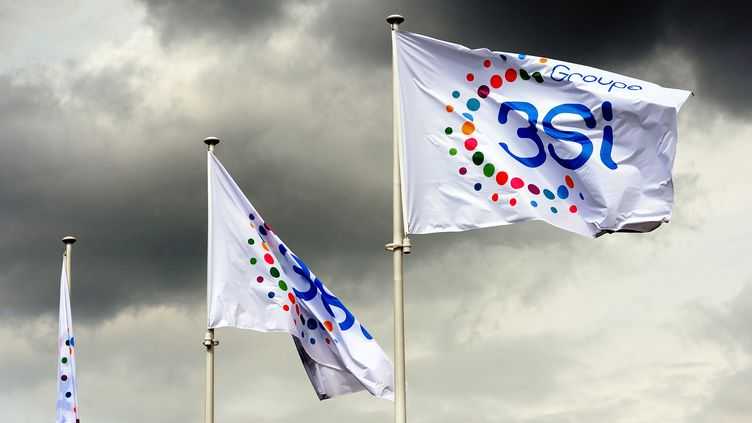 Des drapeaux du groupe 3 Suisses international (3SI) flottent sur le quartier général du groupe à Villeneuve-d'Ascq (Nord), le 27 juin 2013. (PHILIPPE HUGUEN / AFP)