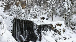 """Le village de Mouthe, le 17 janvier 2017. Egalement situé dans le Doubs, il est réputé pour détenir le record de la température la plus basse jamais enregistrée en France, ce qui lui vaut le surnom de """"Petite Sibérie"""".  (SEBASTIEN BOZON / AFP)"""