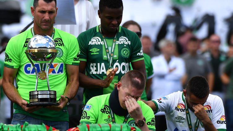 Jackson Follmann, l'un des trois joueurs survivants du crash qui a tué 71 personnes, fin novembre 2016.  (NELSON ALMEIDA / AFP)