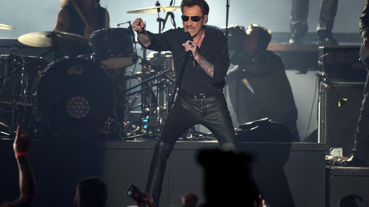 Johnny Hallyday en concert à Bruxelles (Belgique), le 26 mars 2016. (PATRIK STOLLARZ / AFP)