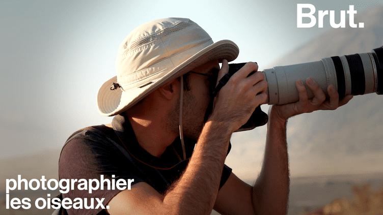 """VIDEO. """"Les oiseaux disparaissent à grande vitesse en France""""…Quand le vidéaste Max Bird évoque sa passion des oiseaux (BRUT)"""