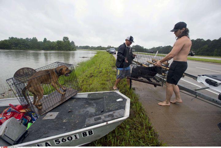 Ces habitants de Central (périphérie de Baton Rouge) sauvent des chiens piégés dans les inondations, le 13 août 2016. (TRAVIS SPRADLING/ SIPA)