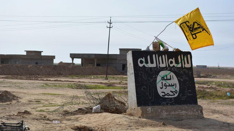Le village d'Al-Alam, dans les faubourgs de Tikrit (Irak), repris aux jihadistes de l'Etat islamique, le 9 mars 2015. (YOUNIS AL-BAYATI / AFP)