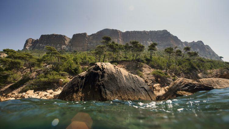 Les falaises duCap Canaille à Cassis (Bouches-du-Rhône). (BORIS HORVAT / AFP)