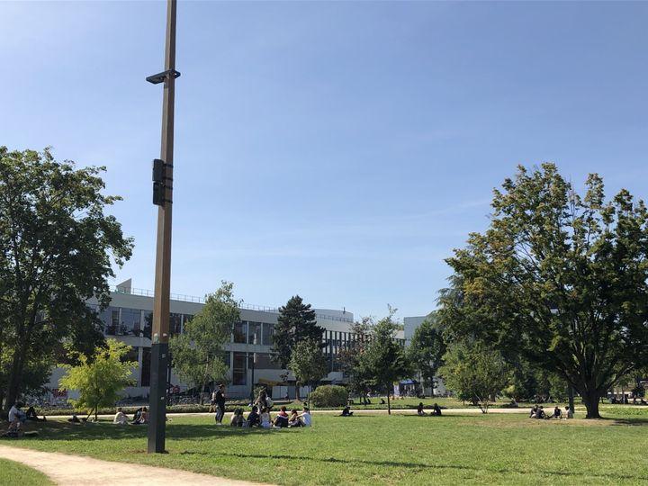 Le retour de la vie sur le campus, après bientôt un an de cours à distance. (NOEMIE BONNIN / RADIO FRANCE)