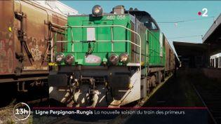 Le train qui achemine les fruits et légumes de Perpignan (Pyrénées-Orientales) à Rungis (Val-de-Marne) va reprendre du service en octobre 2021. La ligne était à l'arrêt depuis plus de deux ans. (FRANCE 2)