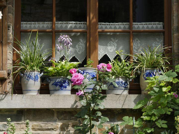 Plantes cultivées dans des pots engrès des Ardennes (Le jardin des Miroirs, Esneux, Belgique). (ISABELLE MORAND / RADIO FRANCE / FRANCE INFO)