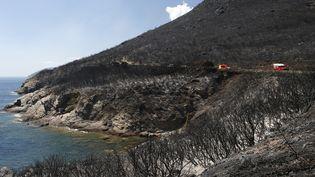 Des camions de pompiers le long du Cap Corse, entre Sisco et Corbara (Haute-Corse), le 12 août 2017. (PASCAL POCHARD-CASABIANCA / AFP)