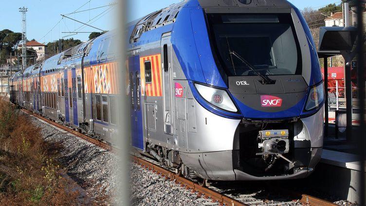 Un TER arrive en gare d'Aubagne (Bouches-du-Rhône) le 30 janvier 2015. (  MAXPPP)