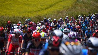 Les coureurs du Tour d'Italie 2021. (DARIO BELINGHERI / AFP)