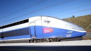 Un TGV de la SNCF en gare de Belfort-Montbéliard à Méroux (Territoire deBelfort), le 24 octobre 2014. (MAXPPP)