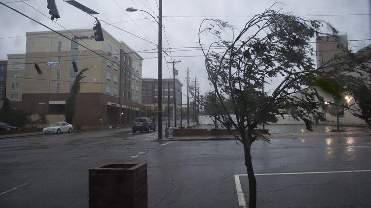 Un arbre se plie sous l'effet du vent provoqué par l'ouragan Florence, le 14 septembre 2018, àWilmington (Caroline du Nord). (ANDREW CABALLERO-REYNOLDS / AFP)