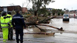 La commune de La Londe-les-Maures (Var) inondée,le 20 janvier 2014. (MAXPPP)