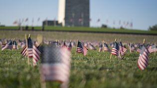 Des drapeaux américains en hommage aux victimes du Covid-19, le 22 septembre 2020 à Washington (Etats-Unis). (ALEX EDELMAN / AFP)
