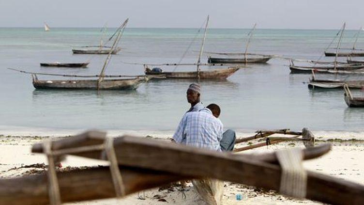 Sur les bords de l'océan Indien, sur l'île de Pemba (archipel de Zanzibar) en Tanzanie en septembre 2011... (REUTERS - Thomas Mukoy)