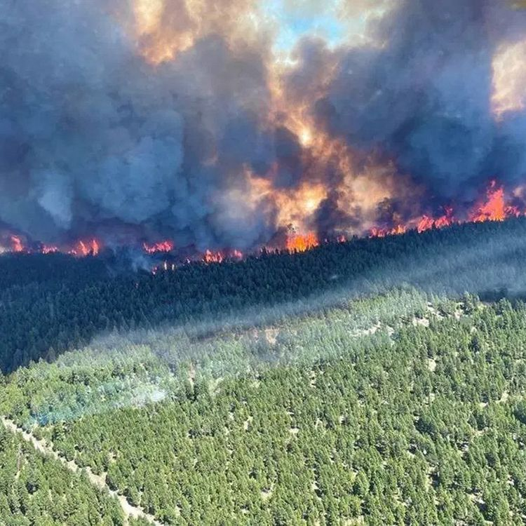"""Le feu de forêt """"Sparks Lake"""" (Colombie-Britannique, Canada), vu du ciel, le 29 juin 2021. (BC WILDFIRE SERVICE / AFP)"""