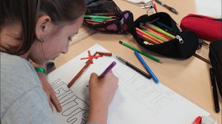 Une élève de 5e du collègeJean-Bauhin d'Audincourt (Doubs), lors d'un atelier sur la laïcité le 8 décembre 2015. (VIOLAINE JAUSSENT / FRANCETV INFO)